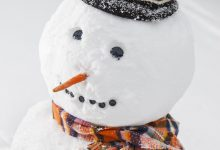 Weihnachtsbaum Bilder 220x150 - Weihnachtsbaum Bilder