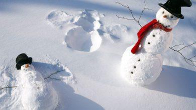 Witzige Schneemänner 390x220 - Witzige Schneemänner