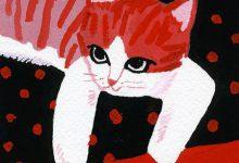 Zeig Mir Bilder Von Katzen Bilder Kostenlos 220x150 - Zeig Mir Bilder Von Katzen Bilder Kostenlos