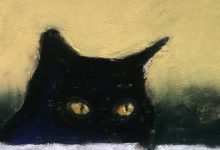 pictures of cats bilder 220x150 - pictures of cats bilder