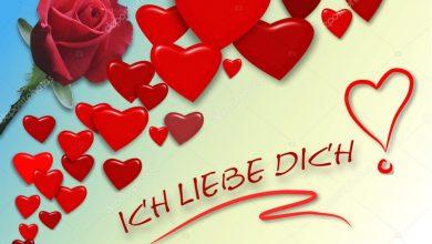 Ich Liebe Dich Bilder Lustig 390x220 - Ich Liebe Dich Bilder Lustig