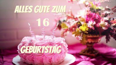 Alles Gute Zum 16 Geburtstag  390x220 - Alles Gute Zum 16 Geburtstag