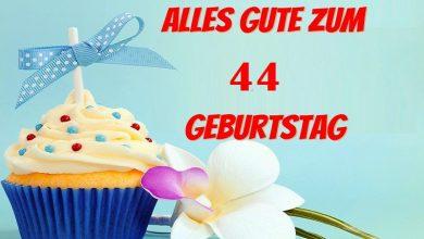 Alles Gute Zum 44 Geburtstag  390x220 - Alles Gute Zum 44 Geburtstag
