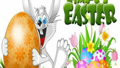 Frohe Ostern Grüße Lustig 390x220 - Frohe Ostern Grüße Lustig