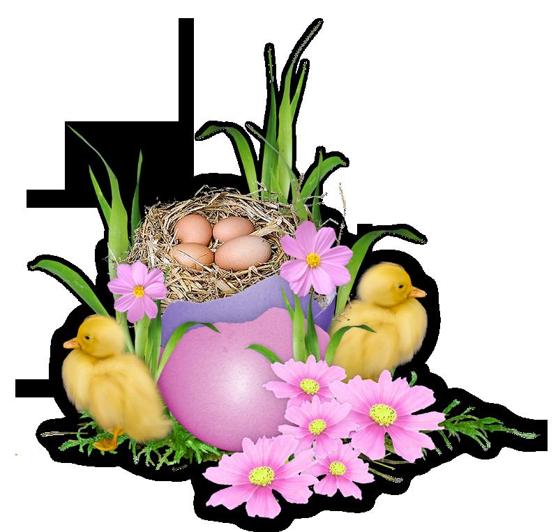 Frohe Ostern Grüße Wünsche - Frohe Ostern Grüße Wünsche