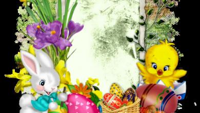 Frohe Ostern Text Geschäftlich 390x220 - Frohe Ostern Text Geschäftlich