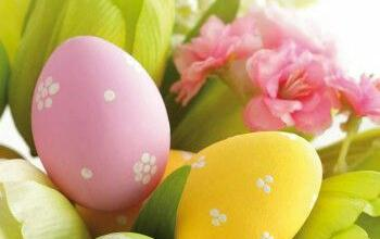 Frohe Ostern Video Lustig 350x220 - Frohe Ostern Video Lustig