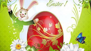 Frohe Ostern Wünsche Bilder 390x220 - Frohe Ostern Wünsche Bilder
