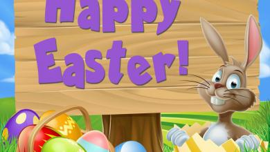Frohe Ostern Wünsche Geschäftlich 390x220 - Frohe Ostern Wünsche Geschäftlich