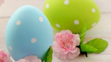 Frohe Ostern Wünsche Ich Euch 390x220 - Frohe Ostern Wünsche Ich Euch