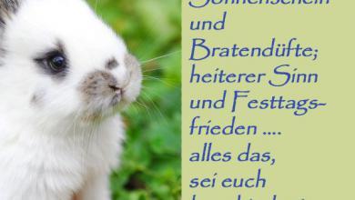 Frohe Ostern Wünsche Texte 390x220 - Frohe Ostern Wünsche Texte