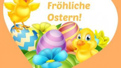 Frohes Osterfest Wünsche 390x220 - Frohes Osterfest Wünsche