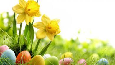 Grüße Zum Osterfest 390x220 - Grüße Zum Osterfest