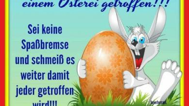 Gratulieren Zum Ostern 390x220 - Gratulieren Zum Ostern