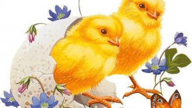 Grußkarten Ostern Animiert 390x220 - Grußkarten Ostern Animiert