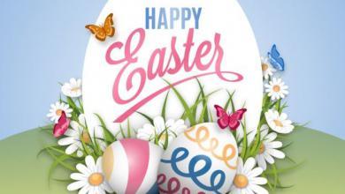 Ich Wünsche Schöne Ostern 390x220 - Ich Wünsche Schöne Ostern