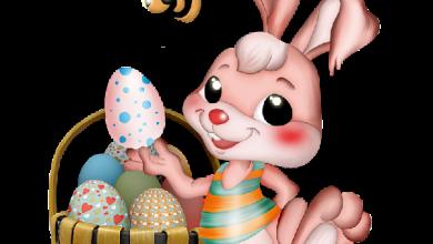Lustige Ostersprüche Whatsapp 390x220 - Lustige Ostersprüche Whatsapp