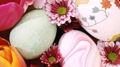 Lustige Sprüche Zu Ostern 390x220 - Lustige Sprüche Zu Ostern