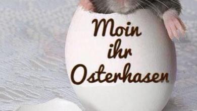 Ostergrüße Geschäftlich Vorlage 390x220 - Ostergrüße Geschäftlich Vorlage