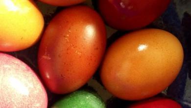 Ostern Gratulieren Wünsche 390x220 - Ostern Gratulieren Wünsche