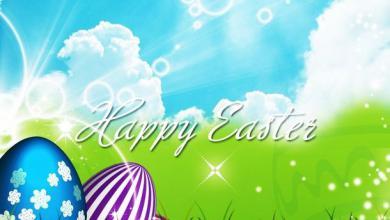 Ostern Wünsche Bilder 390x220 - Ostern Wünsche Bilder