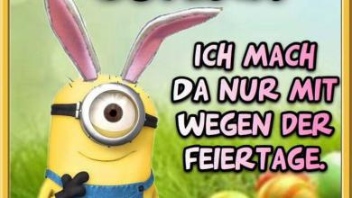 Ostern Witzig 390x220 - Ostern Witzig
