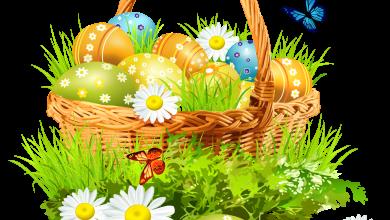 Schöne Osterbilder Und Sprüche 390x220 - Schöne Osterbilder Und Sprüche