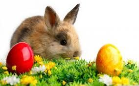 Sprüche Über Ostern - Sprüche Über Ostern