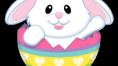 Wünsche Allen Frohe Ostern 390x220 - Wünsche Allen Frohe Ostern
