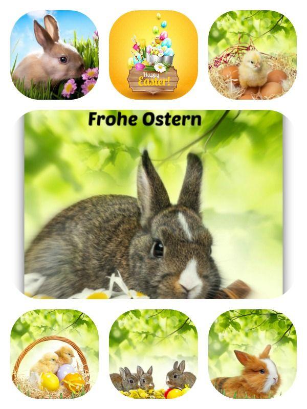 Wünsche Zu Ostern - Wünsche Zu Ostern