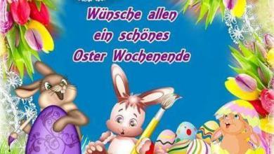 Was Kann Ich Mir Zu Ostern Wünschen 390x220 - Was Kann Ich Mir Zu Ostern Wünschen