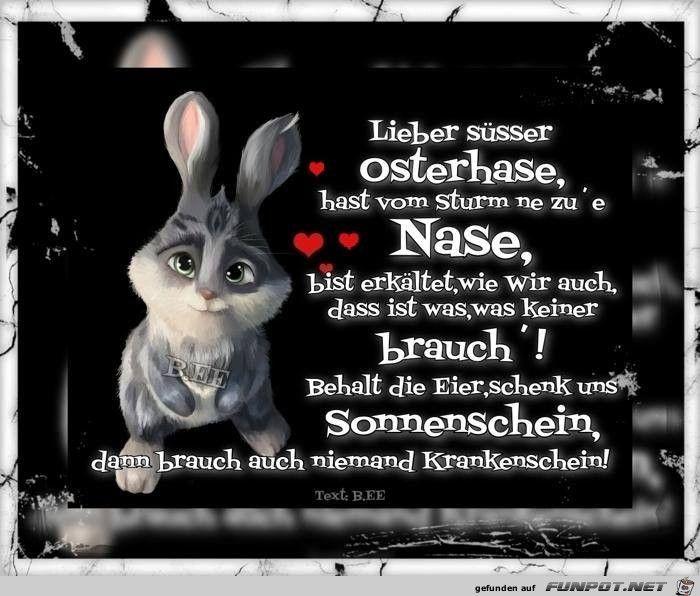 Witzige Ostergrüße Bilder - Witzige Ostergrüße Bilder