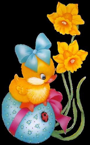 Witzige Osterkarten - Witzige Osterkarten