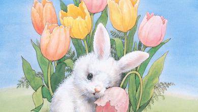 Witzige Ostersprüche Mit Bild 390x220 - Witzige Ostersprüche Mit Bild