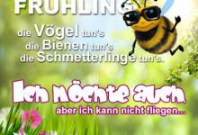 frühling für whatsapp 220x150 - Frühling für whatsapp