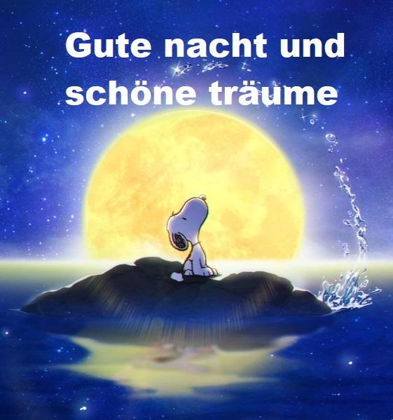 Gute Nacht Und Schone Traume Bilder Und Spruche Fur Whatsapp Und