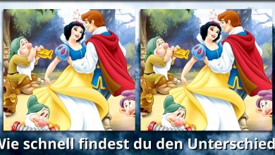 unnamed 390x220 - Cinderella - Wie schnell entdeckst du den Unterschied?