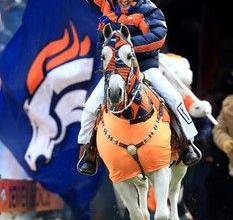 Bild Pferd Lustig Für Facebook 233x220 - Bild Pferd Lustig Für Facebook