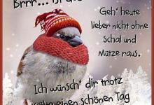Guten Tag Sprüche 220x150 - Guten Tag Sprüche