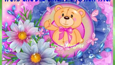 Ich Wünsche Dir Einen Guten Tag 390x220 - Ich Wünsche Dir Einen Guten Tag