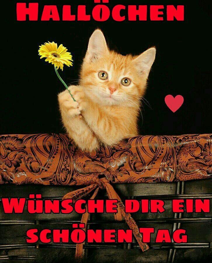Ich Wünsche Dir Einen Schönen Tag Bilder - Ich Wünsche Dir Einen Schönen Tag Bilder