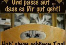 Lustige Guten Tag Sprüche 220x150 - Lustige Guten Tag Sprüche