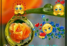 Schönen Tag Bilder Lustig 220x150 - Schönen Tag Bilder Lustig