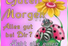 Schönen Tag Sprüche Facebook 220x150 - Schönen Tag Sprüche Facebook