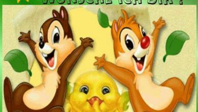 Schönen Tag Wünschen Bilder Für Whatsapp 390x220 - Schönen Tag Wünschen Bilder Für Whatsapp