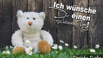 Sprüche Schönen Tag Wünschen 390x220 - Sprüche Schönen Tag Wünschen