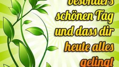 Video Schönen Tag 390x220 - Video Schönen Tag