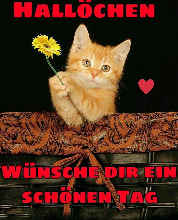 Wünsche Für Einen Guten Tag - Wünsche Für Einen Guten Tag