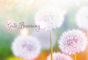 Wünsche Für Gute Besserung - Wünsche Für Gute Besserung