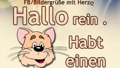 Guten Tag Sprüche Kostenlos Bilder Und Sprüche Für Whatsapp Und